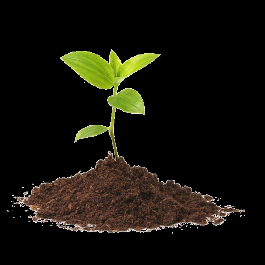 empresa-de-fertilizantes-en-colombia