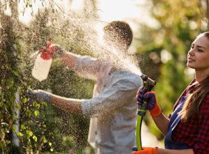 comercializacion-de-fertilizantes