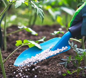 fertilizantes-quimicos